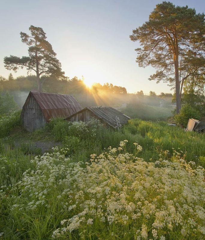 Деревня, рассвет, туман, река, карелия Утро в Тервуphoto preview
