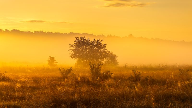 Golden hourphoto preview