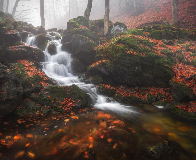 landscape nature scenery forest wood spring waterfall river riverside longexposure mountain balkan vitosha bulgaria река лес весна Autumn hoursphoto preview