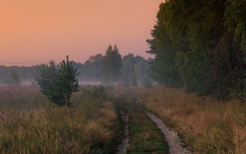 луг лето август рассвет туман И затаилась тьма пред ожиданьем светаphoto preview