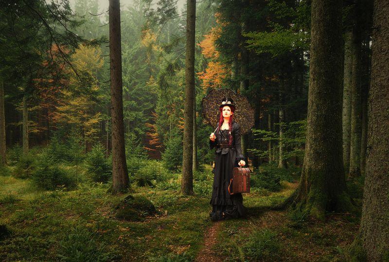 дама, лес, зонт Дама с зонтомphoto preview