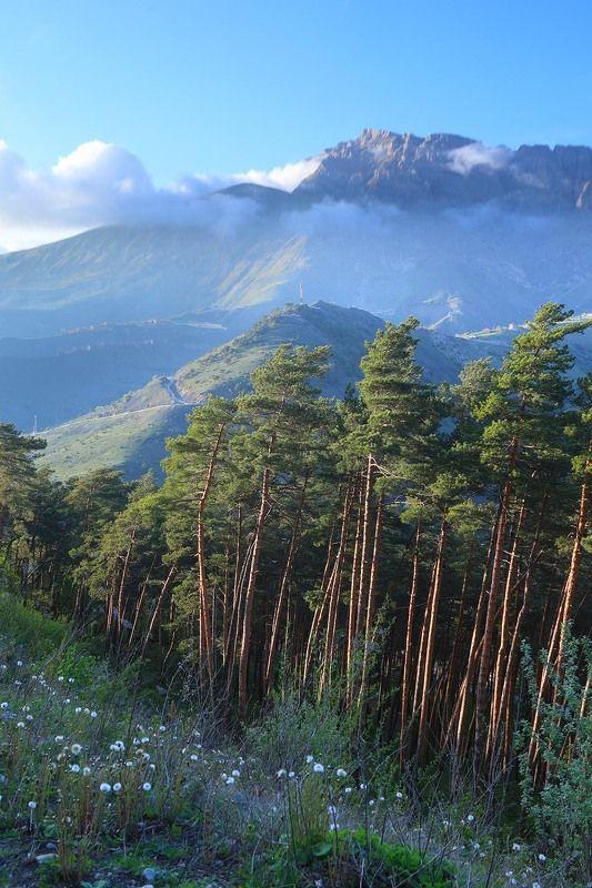 Столовая гора, Ингушетия, Кавказ, Армхи Мят Лоамphoto preview