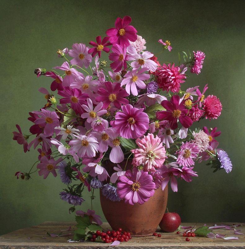 лето,  цветы, натюрморт, марина филатова, космея Палитра нежной красотыphoto preview