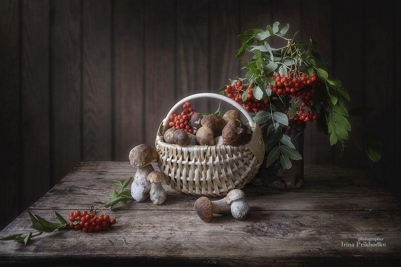 натюрморт, осень, грибы, рябина, деревенский, винтажный Наступает грибная пораphoto preview