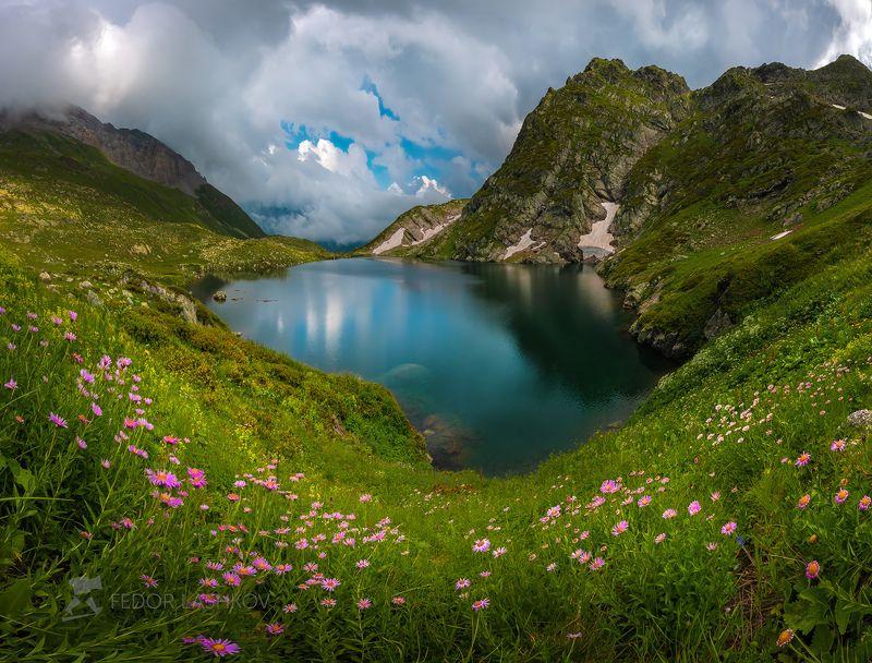 северный кавказ, карачаево-черкесия, озеро, водоём, пятиозёрье, загедан, ацгара, ацгарские, загеданский хребт, днём,  архыз, отражение, берег, луг, цветы, летнее, зелёное, облака, тучи, цветение, Цветущий берегphoto preview