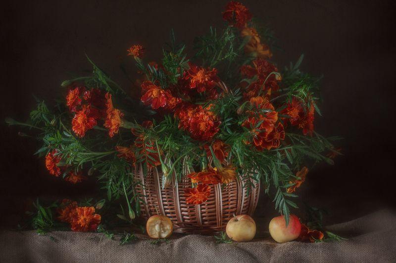 цветы бархатцы ранетка натюрморт мешковина корзинка Бархатцы-красавцы!photo preview