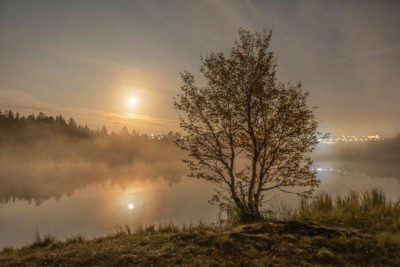 Пейзаж, осень, полнолуние Золотая осеньphoto preview