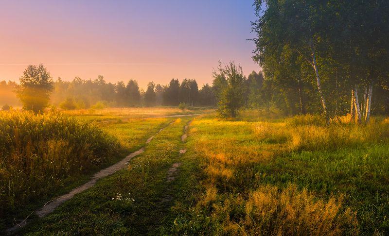 луг лето август рассвет туман О, предрассветный час, таинственная дымка!photo preview