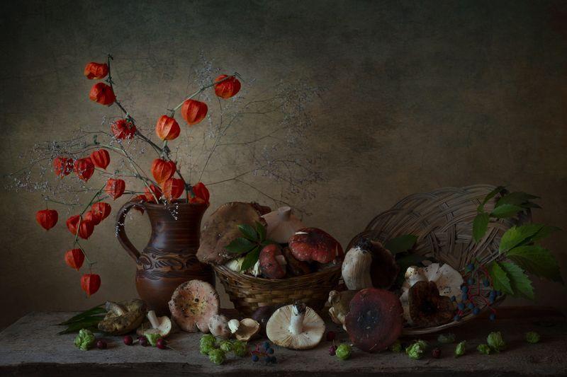 грибы,сыроежки,физалис,сентябрь,натюрморт Сентябрьphoto preview