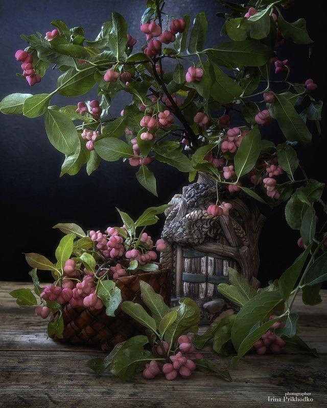 натюрморт, осень, кустарники, букеты. ветки, бересклет, плоды, винтажный Натюрморт с бересклетомphoto preview