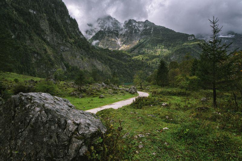 горы; лес; альпы; бавария; Alpine routsphoto preview