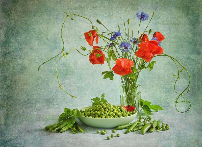 натюрморт, цветной, маки, цветы, лето Макиphoto preview