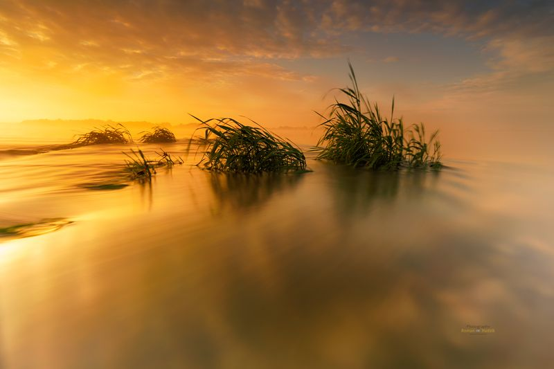 water, river, landscape, sunrise, fog, clouds, Water tales. photo preview