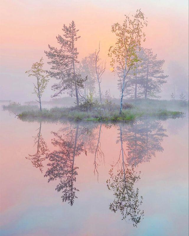 Рассвет, утро, туман Катарсисphoto preview