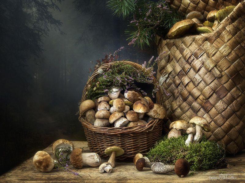 натюрморт, осень, грибы, лесные дары, корзины, фотокартина Грибная пораphoto preview
