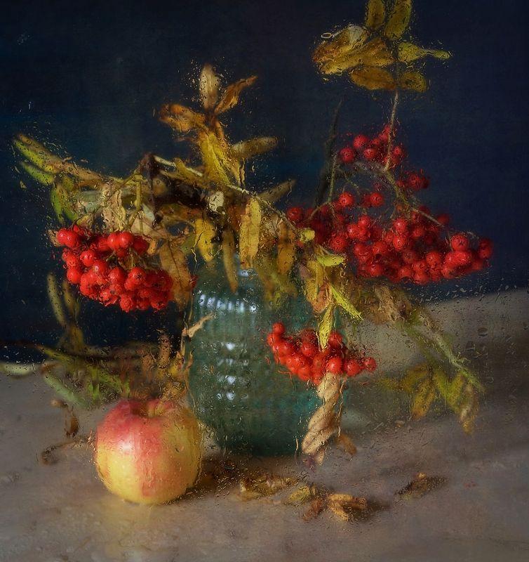 натюрморт,композиция,яблоко,рябина,капли осенние дожди ) фото превью