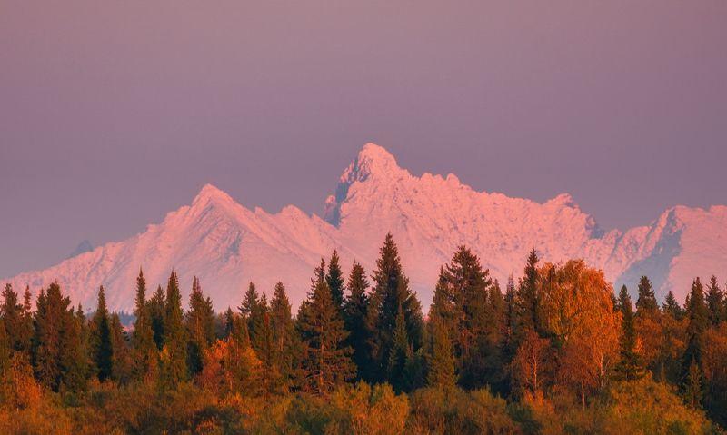 печора, приполярный урал, коми Осенний Урал в зимнем нарядеphoto preview