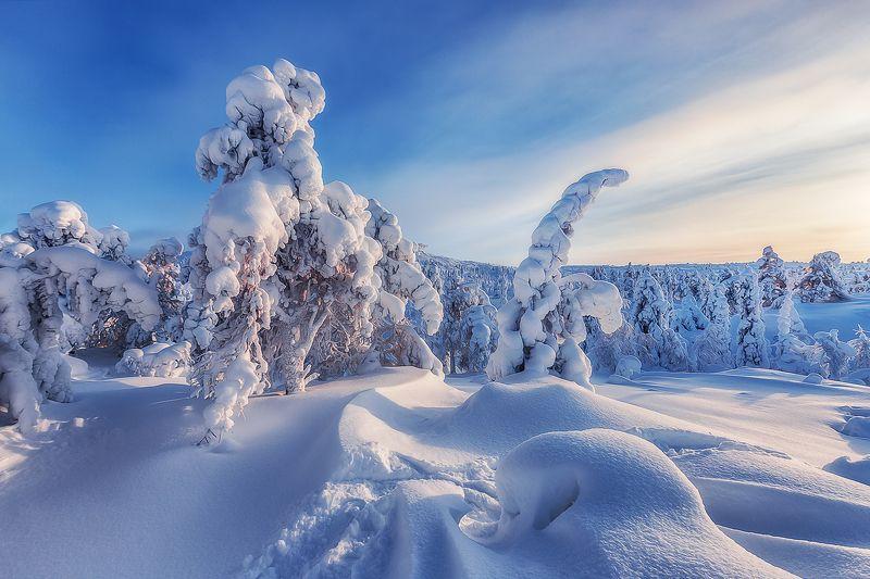 кольский, волосная, кандолакша, заполярье Гора Волосная, Кольский полуостровphoto preview