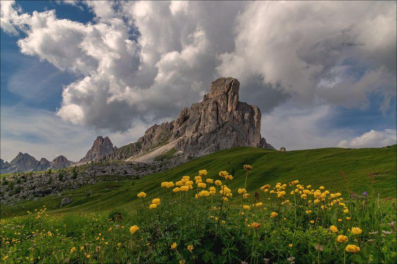 доломитовые альпы,passo giau,панорама,лето,италия,alps,пейзаж,dolomites,цветение БЕЛАЯ ТУЧАphoto preview