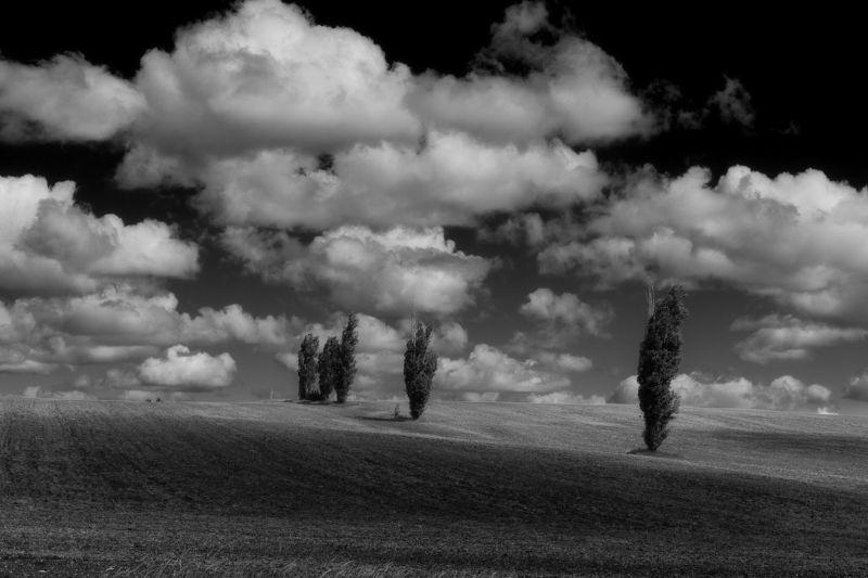 Под ватой облаковphoto preview