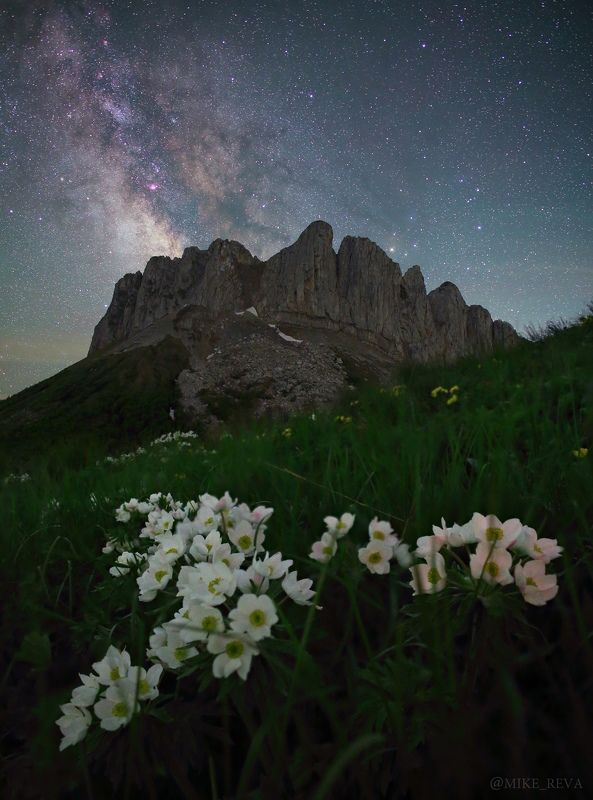 ночь ночной пейзаж астрофотография звезды созвездия Сон в летнюю ночьphoto preview