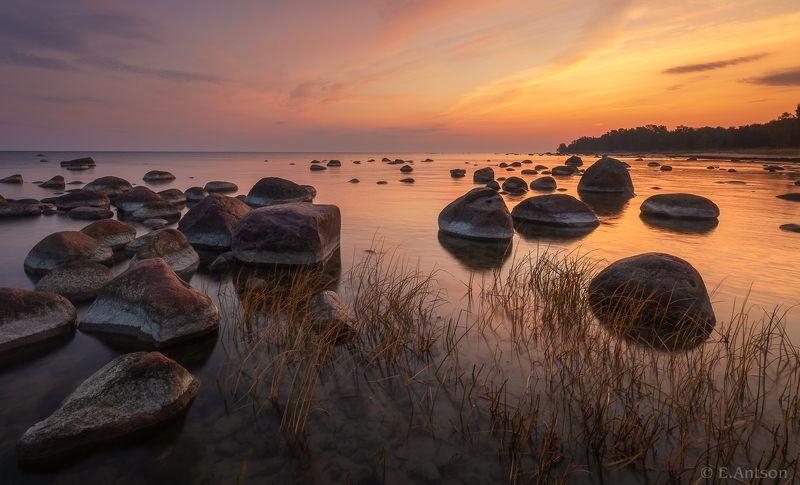 пейзаж, природа, море, эстония Осеннее утро у залива фото превью