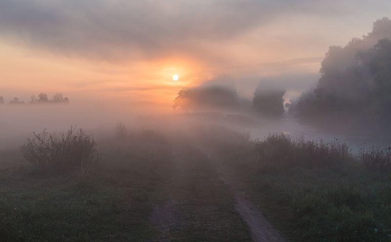 Туман фото превью