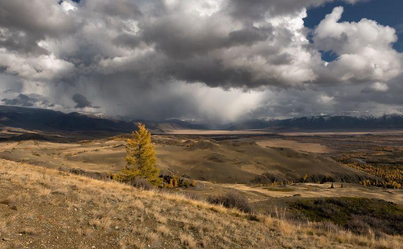 алтай, курайская степь., непогода., Приближение непогоды.photo preview
