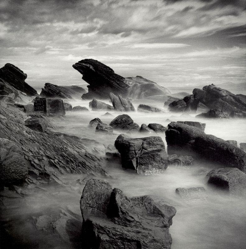 filmphotography, analogphotography, darkroomphotography, silvergelatineprint, b&w, blackandwhite Sea Lionphoto preview