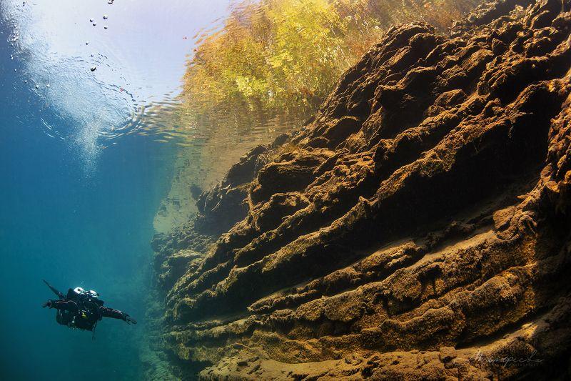 подводное фото, налим, вода, дайвер, источник photo preview