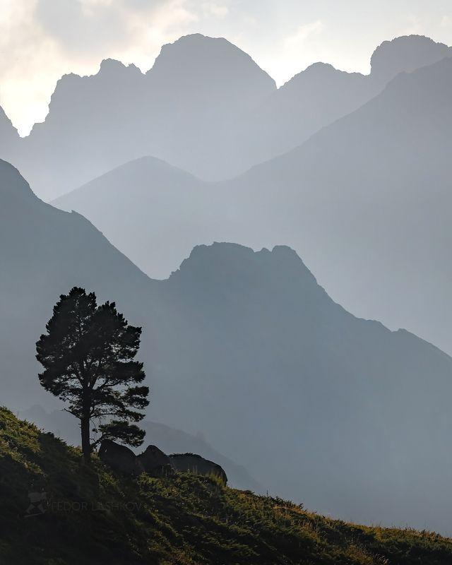 карачаево-черкесия, горы, гора, долина, кавказ, кавказские горы, туман, дымка, туманный, хребет, склон, вершина, акварель, дерево, сосна, лето, закат, воздушные, линии, графика, серый, Воздухphoto preview