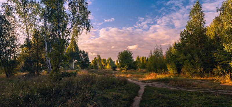луг осень сентябрь вечер закат Когда сентябрь стучится в двериphoto preview