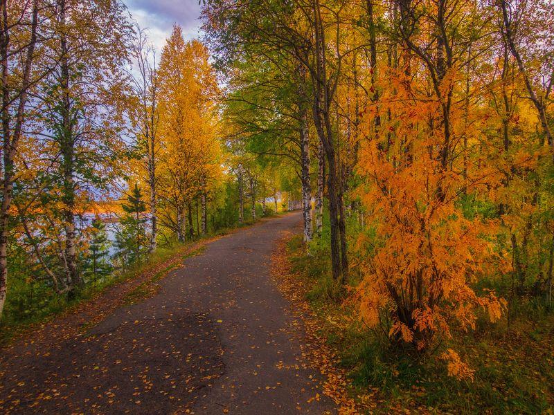 печора, коми, осень Осенняя Печораphoto preview