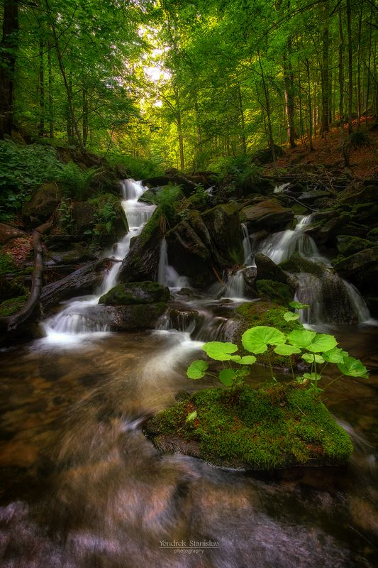 пейзаж лес водопад вода лето карпаты landscape waterfall forest water summer karpaty photo preview