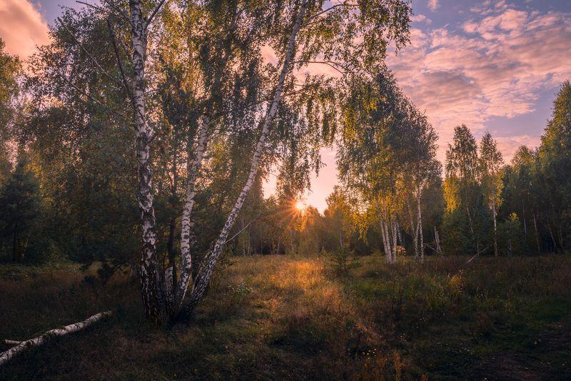 луг осень сентябрь вечер закат Когда уходит солнце на покойphoto preview