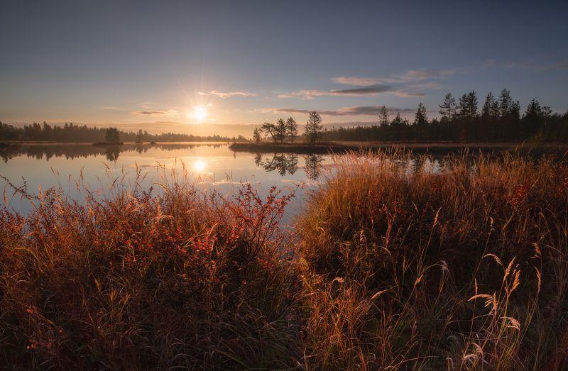 Прекрасное утро на любимом озере.photo preview