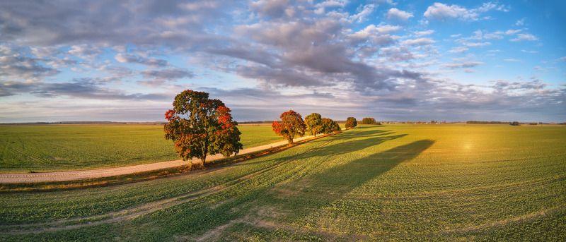беларусь, дорога, облака, осень, рассвет, сентябрь, утро Ранняя осеньphoto preview