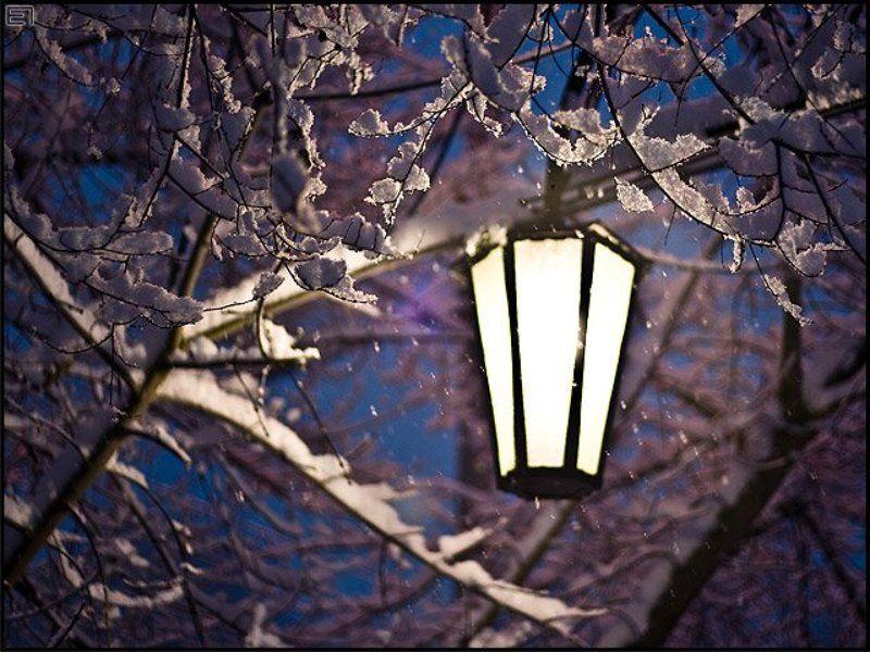 зима, снег, хлопья, фонарь, ночь Фонарь. Зима. Фонарь.photo preview