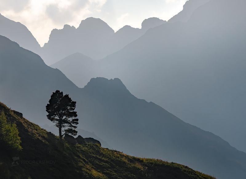 Карачаево-Черкесия, горы, гора, долина, Кавказ, Кавказские горы, туман, дымка, туманный, хребет, склон, вершина, акварель, дерево, лето, закат, воздушные, линии, графика, серый,  Линии горphoto preview