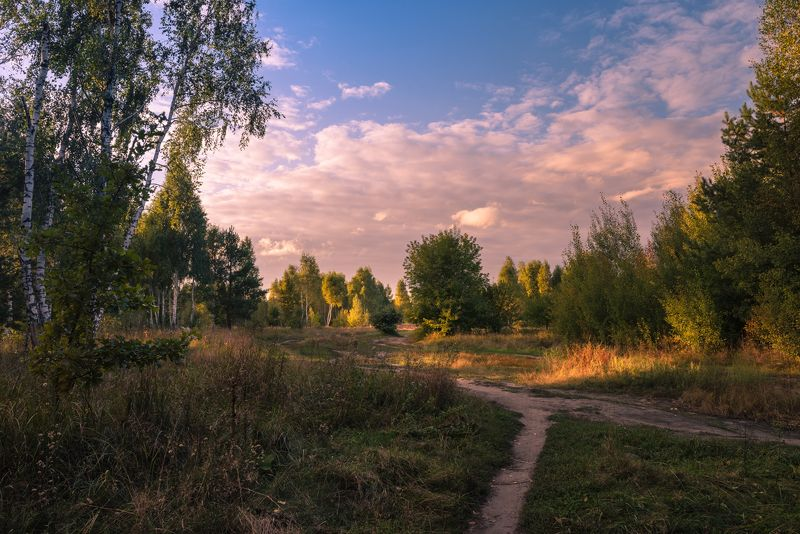 луг, осень, сентябрь, вечер, закат Сентябрьский вечер догорает и месяц в небе выплываетphoto preview
