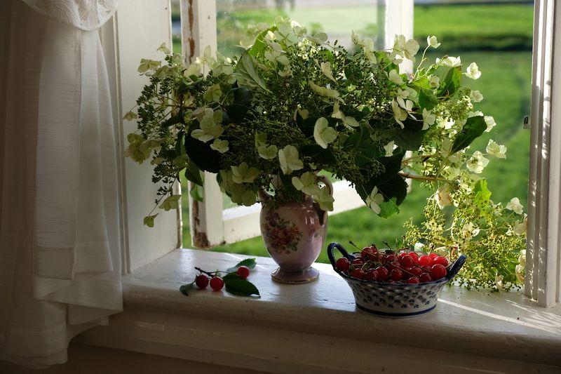 Still life, nature, flora, hops, cherry, berries, food, summer, colors, хмель, вишня, натюрморт,  Хмель и вишня.photo preview