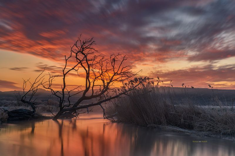 river, sunrise, Kociewie, Poland, colorful colors, tree, clouds The river meanders.photo preview