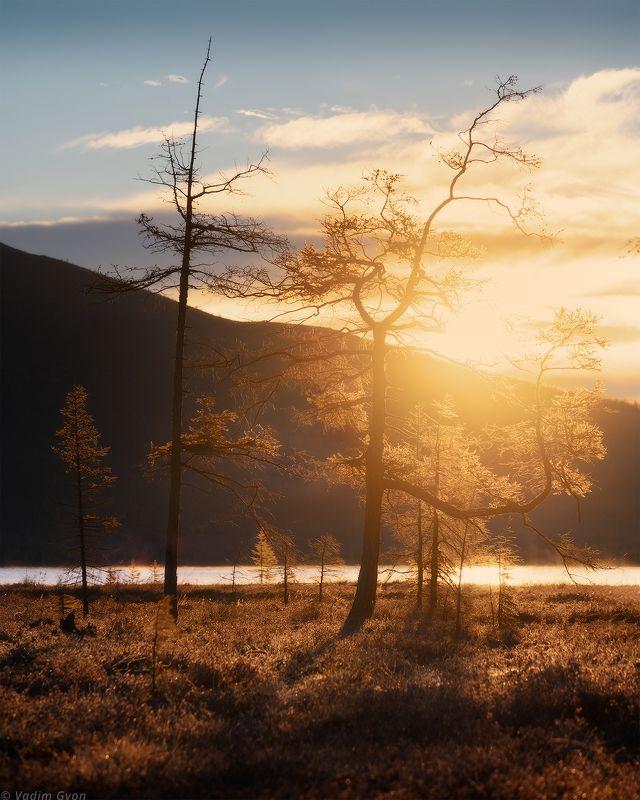 озероджекалондона, пурга, магадан, колыма Обитатели озера Джека Лондонаphoto preview