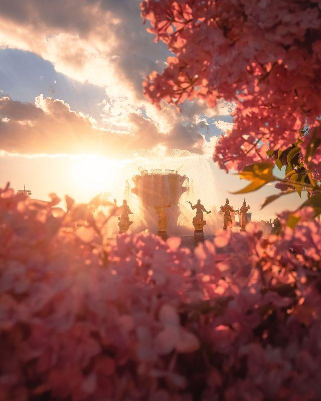 вднх, фонтан, весна, цветы, сирень, Moscow, architecture, fountain, москва, город ВДНХphoto preview