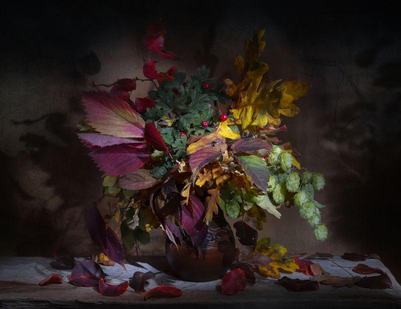 осенние листья,ночь,натюрморт,осеннее равноденствие Ночь осеннего равноденствияphoto preview