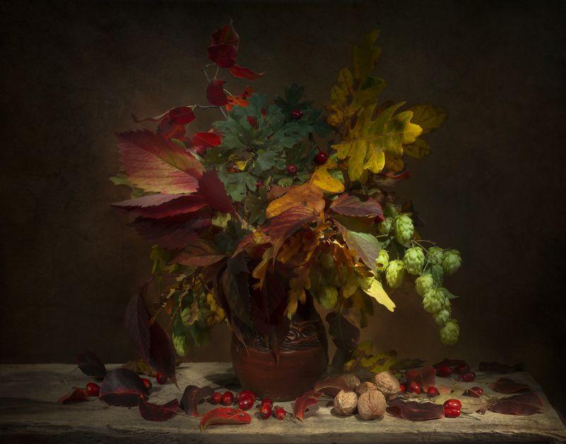 осенние листья,натюрморт,осеннее равноденствие Осеннее Равноденствиеphoto preview