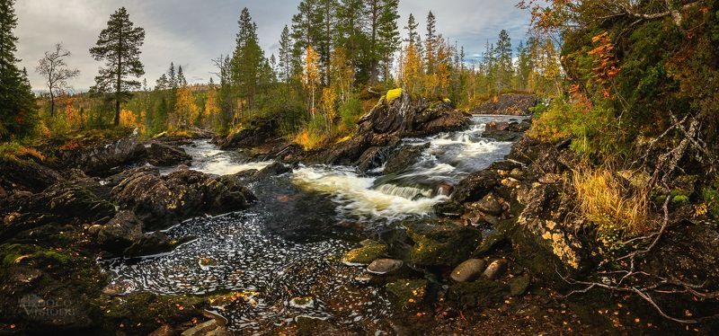 forest,stream,waterfall,norway,autumn,woods,woodland,river,autumnal,panorama,panoramic,pano, Autumnal woodland scenery фото превью