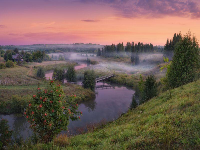 утро, туман, река Утренний светphoto preview