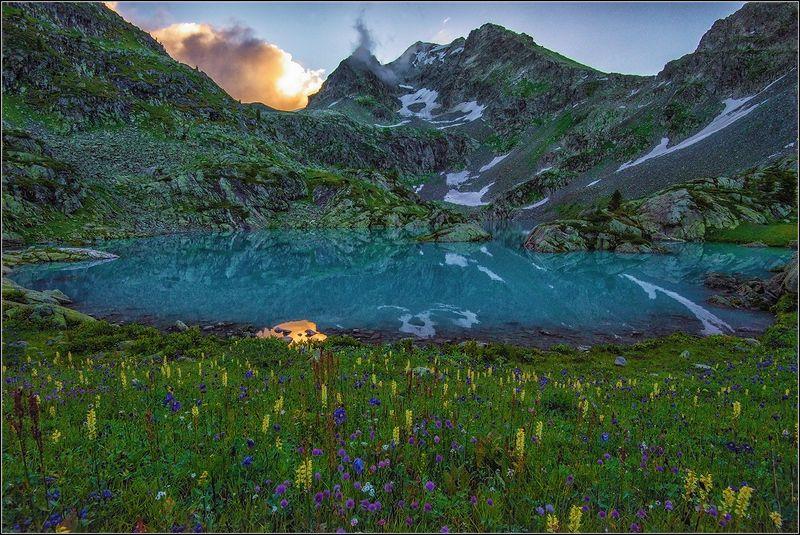 алтай, катунский хр., озеро, цветы Утро на горном озереphoto preview