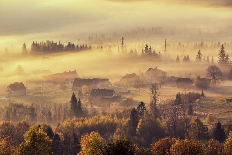 Poranna mgła фото превью